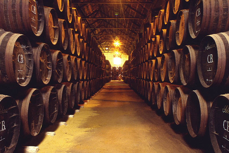 Bodegas Alvear-photo